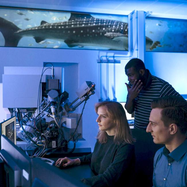 matworks Materialographie Licht-/Rastermikroskopie HSAA IMFAA